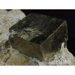 Piryty w marglu talkowo-chlorytowym - ładne kryształy -Hiszpania