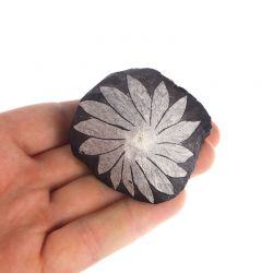 Celestyn - kamień chryzantemowy - Chiny