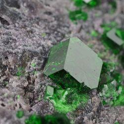 Uwarowit - rzadki granat chromowy - kryształy do 4 mm - Rosja